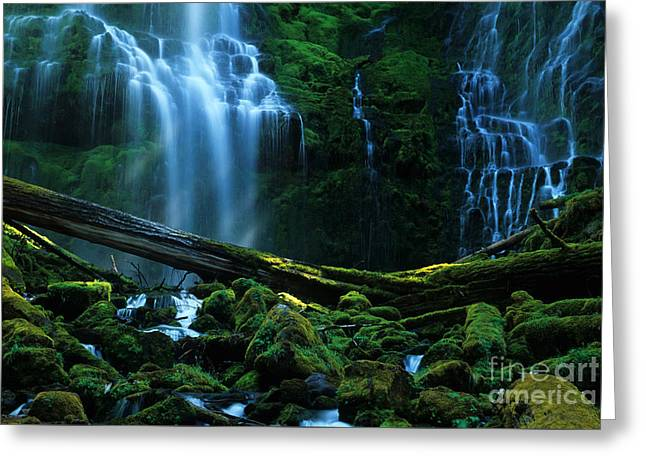 Moss Green Greeting Cards - Proxy Falls Oregon Greeting Card by Bob Christopher