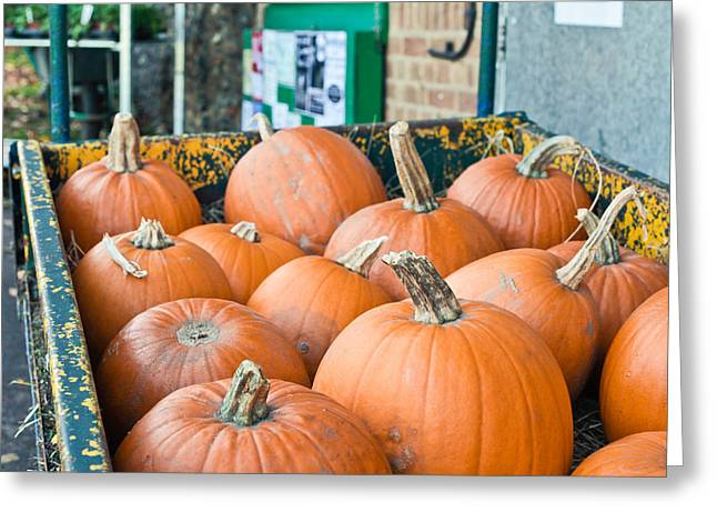 Orange Pumpkin Greeting Cards - Pumpkins Greeting Card by Tom Gowanlock