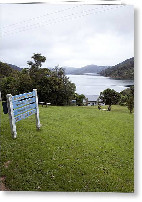 Queen Charlotte Sound Greeting Cards - Queen Charlotte Sound Greeting Card by Karen Cowled