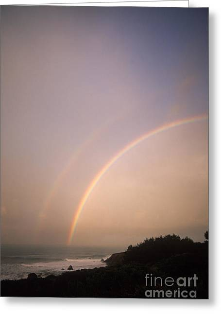 Big Sur California Greeting Cards - Rainbow Greeting Card by Mark Newman