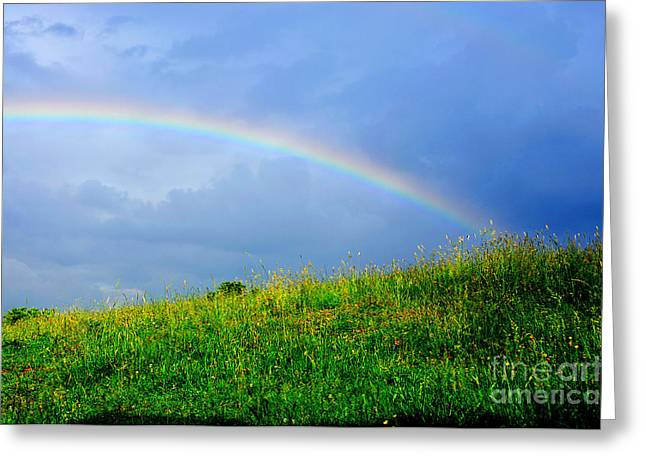 Best Sellers -  - Summer Storm Greeting Cards - Rainbow over Pasture Field Greeting Card by Thomas R Fletcher