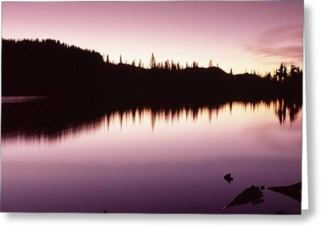 Pierce County Greeting Cards - Reflection Of Trees In A Lake, Mt Greeting Card by Panoramic Images