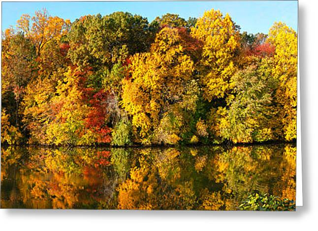 Autumn Colors Greeting Cards - Reflection Of Trees In A Lake Greeting Card by Panoramic Images