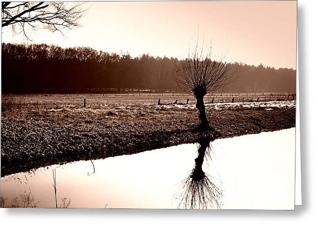 Drab Greeting Cards - Reflections of Winter Greeting Card by Mountain Dreams