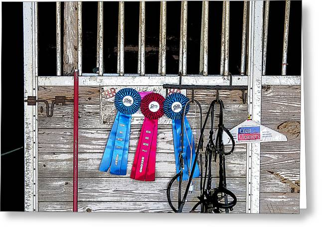 Dressage Photographs Greeting Cards - 3 Ribbons Today Greeting Card by Rich Franco
