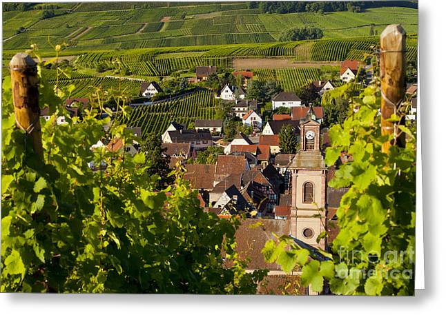 Route Des Vins Greeting Cards - Riquewihr Alsace Greeting Card by Brian Jannsen