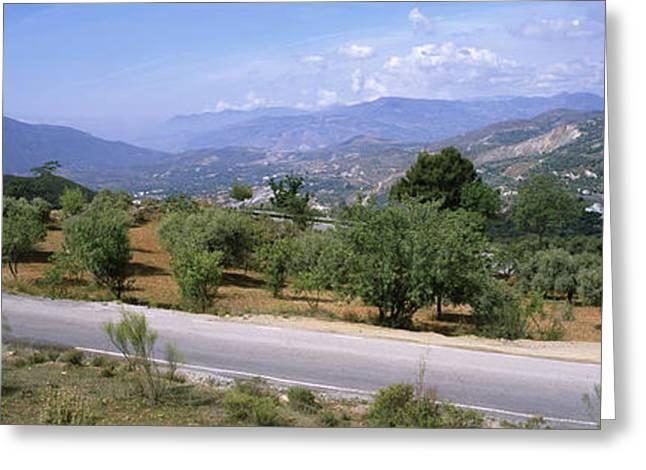 Mediterranean Landscape Greeting Cards - Road Passing Through A Landscape Greeting Card by Panoramic Images