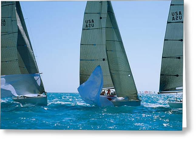 Blue Sailboat Greeting Cards - Sailboat Racing In The Ocean, Key West Greeting Card by Panoramic Images