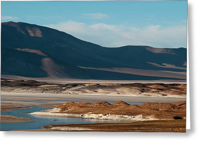 Salar De Talar, Atacama Desert, Chile Greeting Card by Sergio Pitamitz
