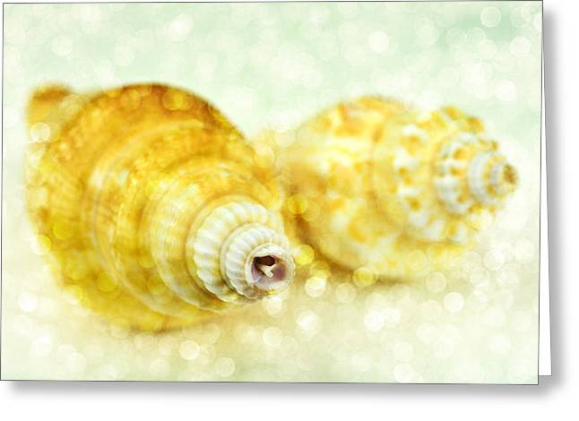 Assorted Mixed Media Greeting Cards - Sea shells Greeting Card by Toppart Sweden