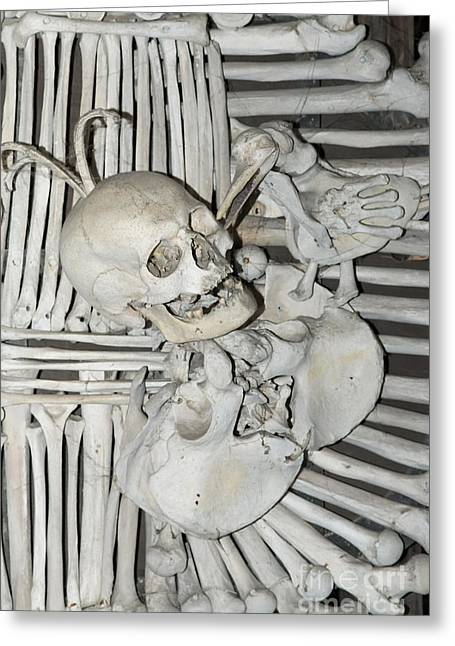 Grisly Greeting Cards - Sedlec Ossuary - Charnel house Greeting Card by Michal Boubin