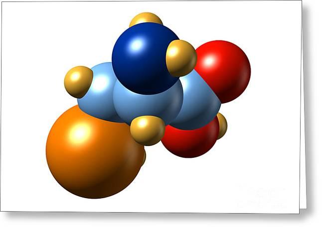 Sec Greeting Cards - Selenocysteine, Molecular Model Greeting Card by Dr. Mark J. Winter