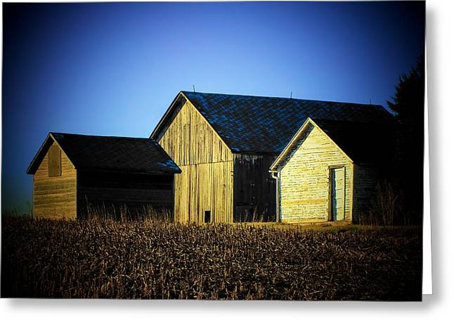 Shed Greeting Cards - 3 Sheds Greeting Card by Michael L Kimble
