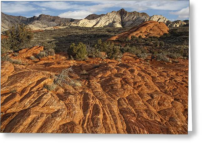Geologic Formations Greeting Cards - Snow Canyon State Park Utah Greeting Card by Utah Images