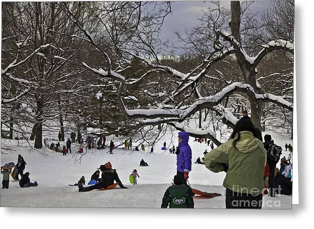 Snowstorm Greeting Cards - Snowboarding  in Central Park  2011 Greeting Card by Madeline Ellis
