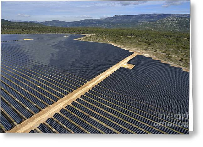 Solar Panels In Farm Greeting Card by Sami Sarkis