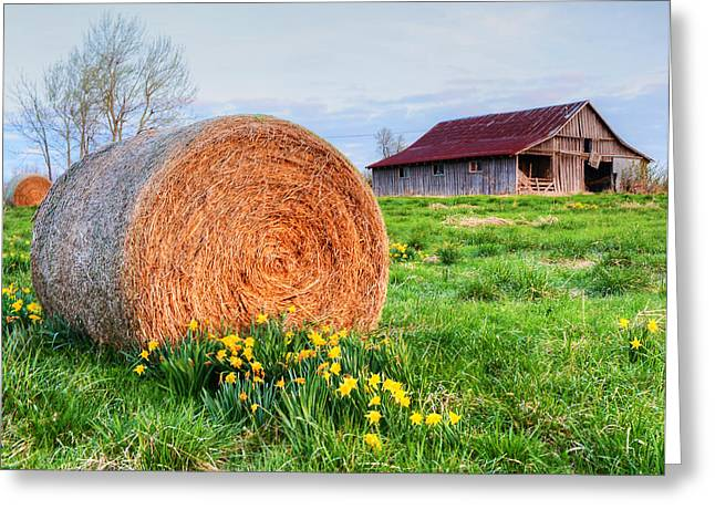 Hay Bales Greeting Cards - Spring Time Barn Greeting Card by Kevin Pugh
