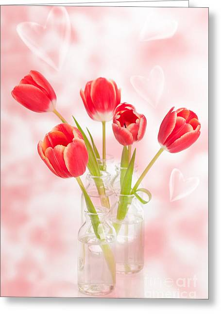 Glass Vase Photographs Greeting Cards - Spring Tulips Greeting Card by Amanda And Christopher Elwell