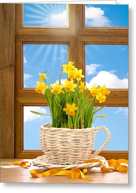Window Frame Greeting Cards - Spring Window Greeting Card by Amanda And Christopher Elwell