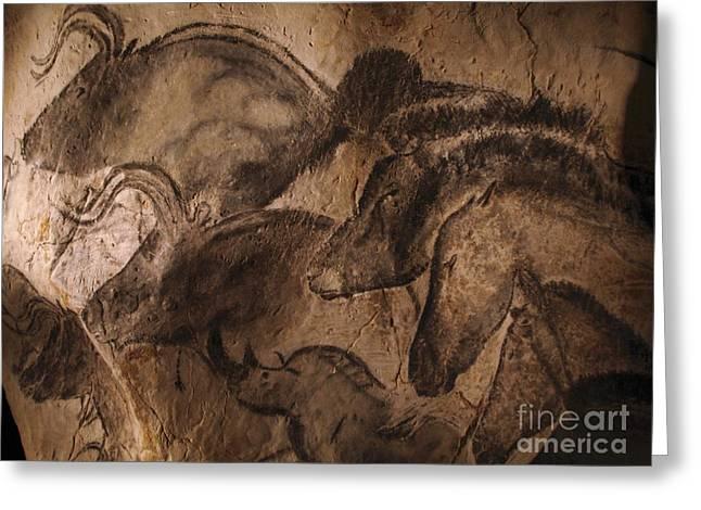 Stone-age Cave Paintings, Lascaux Greeting Card by Javier Trueba/MSF