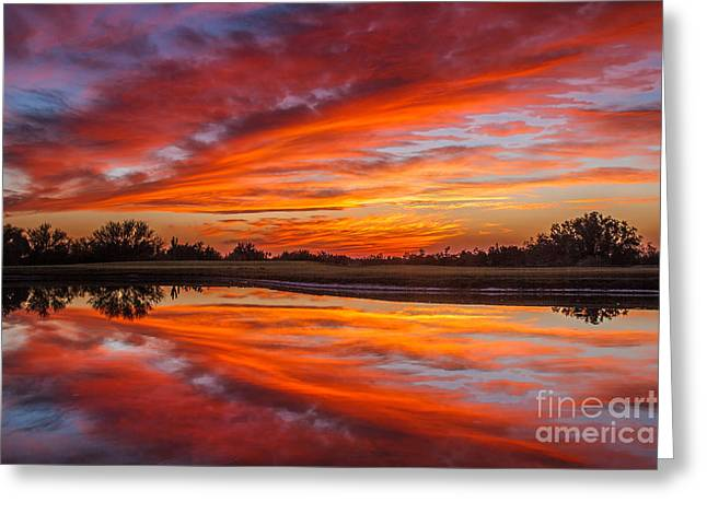 Reflecting Water Greeting Cards - Sunset Reflections Greeting Card by Robert Bales