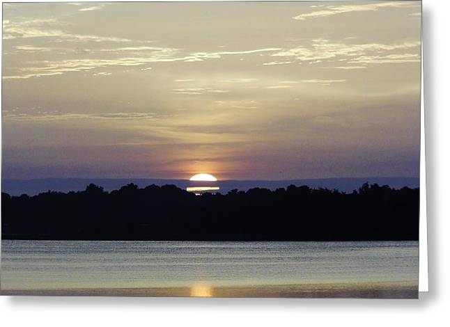 Trees Reflecting In Water Greeting Cards - Sunshine At The Lake  Greeting Card by D Hackett