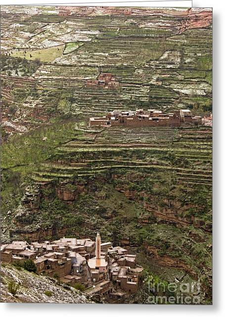 Haut Greeting Cards - Terraced Hillside In Morocco Greeting Card by Bob Gibbons