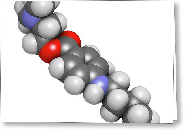 Tetracaine Local Anesthetic Drug Molecule Greeting Card by Molekuul