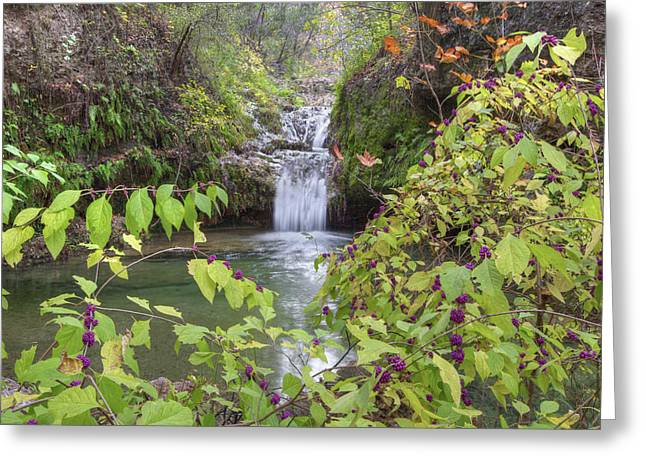 Photos Of Autumn Greeting Cards - Texas Hill Country Images - Twin Falls in Autumn at Pedernales F Greeting Card by Rob Greebon