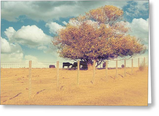 Space Photographs Greeting Cards - The Cow Tree Greeting Card by Amy Tyler