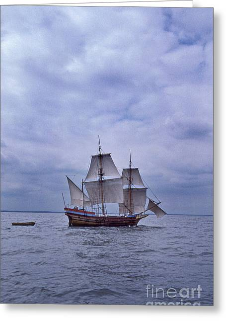 Sailboat Photos Greeting Cards - The Dove  Greeting Card by Skip Willits