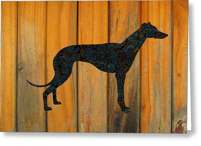 Greyhound Dog Greeting Cards - The Grey Greeting Card by Celestial Images