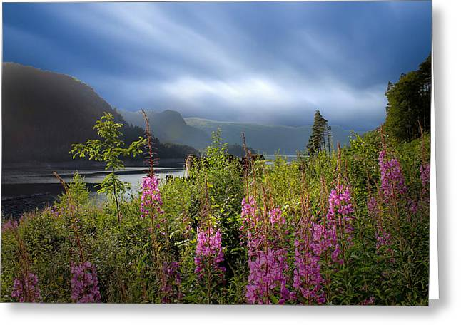 Cumbria Greeting Cards - The Lake District Greeting Card by Martin Newman