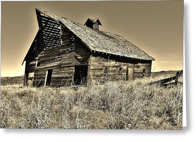 Rundown Barn Greeting Cards - The Old Barn Greeting Card by Mountain Dreams