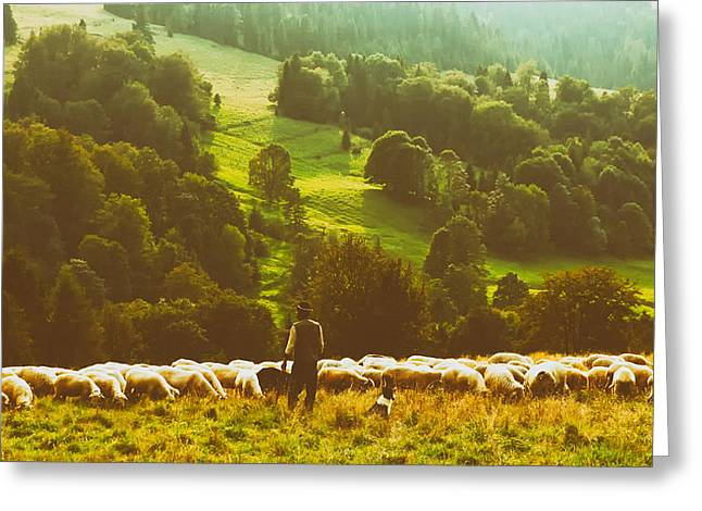 Analog Greeting Cards - The Shepherd Greeting Card by Biegun Wschodini