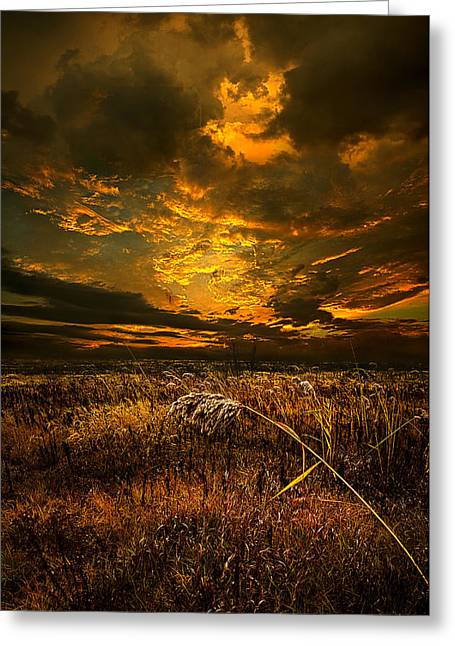 Geographic Greeting Cards - Timeless Greeting Card by Phil Koch