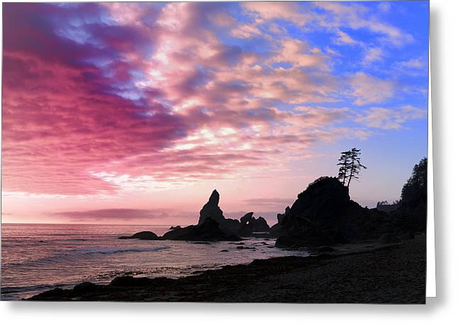 Beaches In Washington Greeting Cards - Tranquil Shores Greeting Card by King Wu