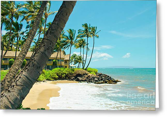 My Ocean Greeting Cards - Tropical Paradise Greeting Card by Sharon Mau