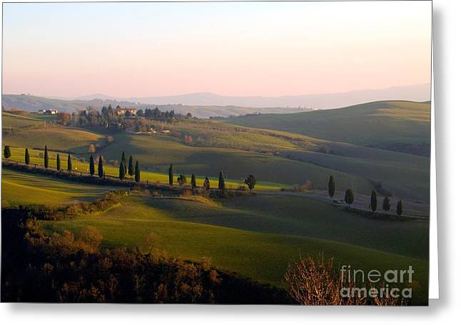 Tuscan Hills Greeting Cards - Tuscan Countryside Greeting Card by Tim Holt