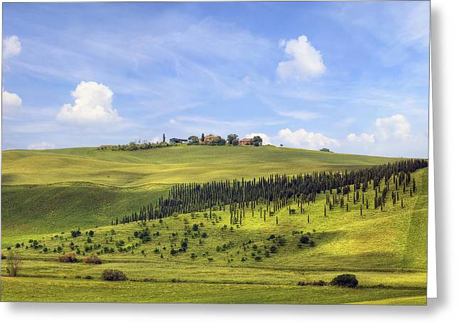 Vineyard Landscape Greeting Cards - Tuscany - Montalcino Greeting Card by Joana Kruse