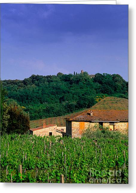 Italian Landscapes Greeting Cards - Tuscany, Italy Greeting Card by Bill Bachmann