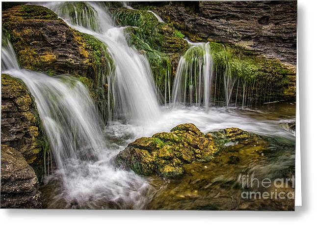 Moss Greeting Cards - Waterfall Greeting Card by Carlos Caetano