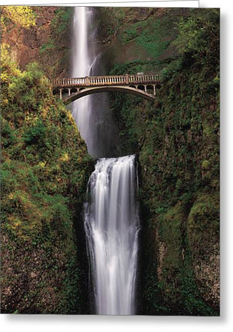 White River Scene Greeting Cards - Waterfall In A Forest, Multnomah Falls Greeting Card by Panoramic Images