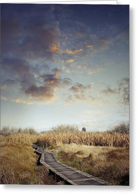 Wetland Greeting Cards - Wetland walk Greeting Card by Les Cunliffe