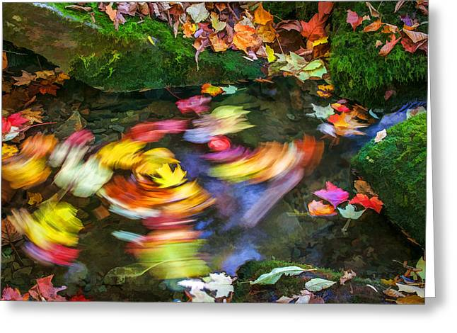 Fallen Leaf Greeting Cards - Whirlpool Great Smoky Mountain Painted  Greeting Card by Rich Franco