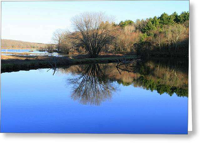 Nature Photos Greeting Cards - Winter Blues Greeting Card by Neal  Eslinger
