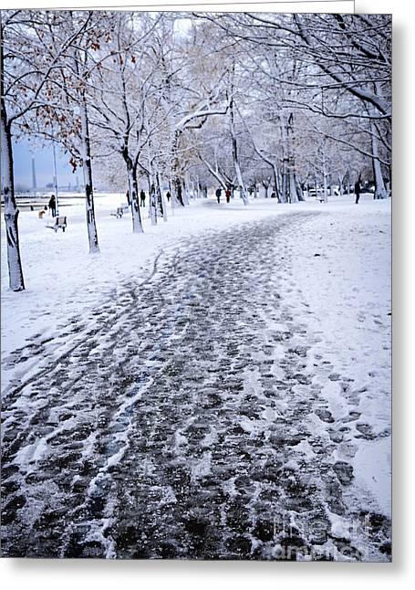 Footprint Greeting Cards - Winter park Greeting Card by Elena Elisseeva