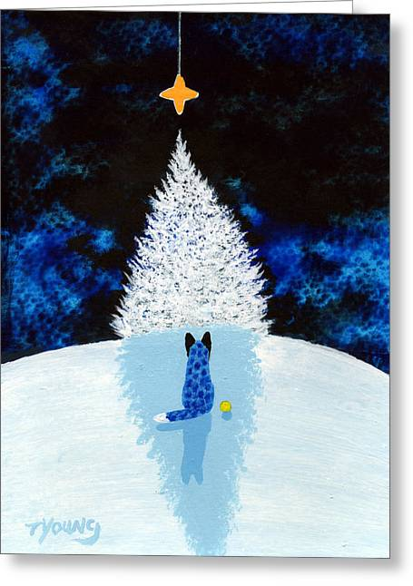 Blue Heeler Greeting Cards - Winter Star Greeting Card by Todd Young