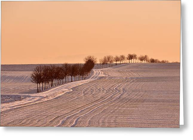 Wintry Greeting Cards - Winter Vista Greeting Card by Mountain Dreams