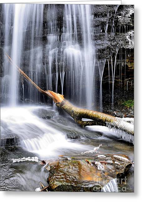Rhododendron Maximum Greeting Cards - Winter Waterfall Greeting Card by Thomas R Fletcher